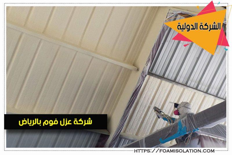 عزل الحوائط from www.foamisolation.com